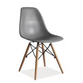 Scaun din plastic si lemn Enzo Gri