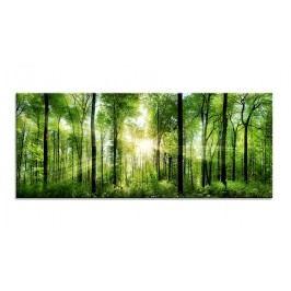 Tablou Sticla Glasspik Sunlight, 50x125 cm