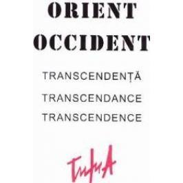 Album Orient Occident. Transcendenta - Alexandru Trifu